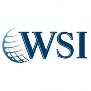 WSI LinkedIn Square Logo